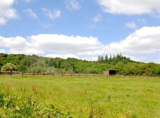 guidel-location-de-pré-chevaux-morbihan-pré-a-louer-finistere